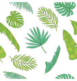 tropical leaves various shapes seamless pattern vector image
