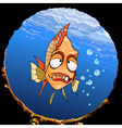 cartoon funny toothy fish under the water looking vector image vector image