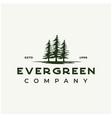 vintage rustic retro evergreen pines spruce cedar vector image