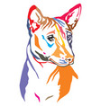 colorful decorative portrait of dog basenji vector image vector image