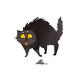 cute fluffy fat black cat scared of little mouse vector image vector image