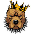 head of a dog in the crown vector image vector image