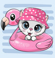 kitty in panama hat swimming on pool ring vector image vector image