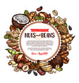 nuts and beans natural sketch poster vector image