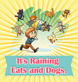 Raining cats and dogs vector image vector image