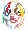 colorful decorative portrait of dog st bernard vector image vector image