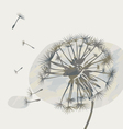 dandelion on a cloud graphic vector image
