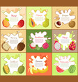 pitaya and mango fruity fruits vector image