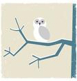 Snowy white owl vector image