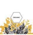 template organic 1 vector image vector image