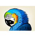 blue parrot vector image