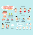 rsvrespiratory syncytial virus infographic vector image
