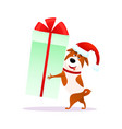 funny cartoon dog with christmas gift flat puppy vector image