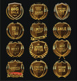 gold and brown quality shields collection vector image