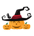 halloween pumpkin with black witches hat vector image vector image