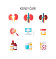 kidney care set vector image