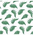 pattern of fern leaf vector image
