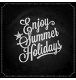 summer holiday chalk vintage lettering background vector image