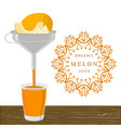 the theme melon vector image vector image