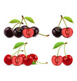 cherries whole and half berries 3d realistic set vector image