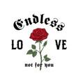 endless love not for you abstract apparel vector image