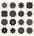 Mandala Lace Ornaments vector image