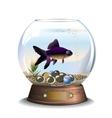 Round aquarium with one fish vector image vector image