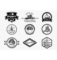 Spice logo set in vintage style hand drawn vector image vector image