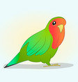 bright parrot in cartoon style on a simple vector image vector image