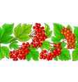 guelder rose pattern on white background vector image vector image