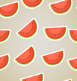 Red water melon slices seamless background vector image vector image