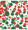 seamless pattern with nasturtium isolate vector image