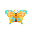 beautiful butterfly insect on vector image vector image