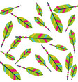 colored feathers tribal decoration pattern vector image
