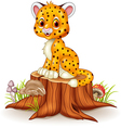 Cute baby cheetah sitting on tree stump vector image vector image