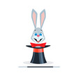 Rabbit with a red bow sits in a hat cylinder