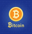 bitcoin crypto currency digital money vector image vector image