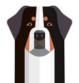 head bernese mountain dog vector image