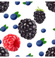 realistic blackberry blueberry and raspberry vector image