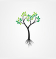 tree with roots green spring tree vector image vector image