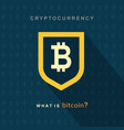 bitcoin concept cryptocurrency logo sigh vector image vector image