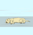 dog lies on nature vector image vector image