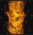 fire flame with vertical repeat vector image vector image