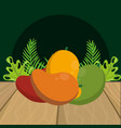 fresh fruits cartoon vector image