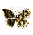 gold flower butterfly with black orchid vector image
