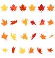 Maple Leaves Set vector image