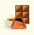 chocolate bar design vector image