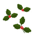 christmas holly berry icon collection vector image vector image