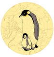 penguins baby and parent vector image vector image
