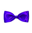realistic blue bow isolated on white background vector image
